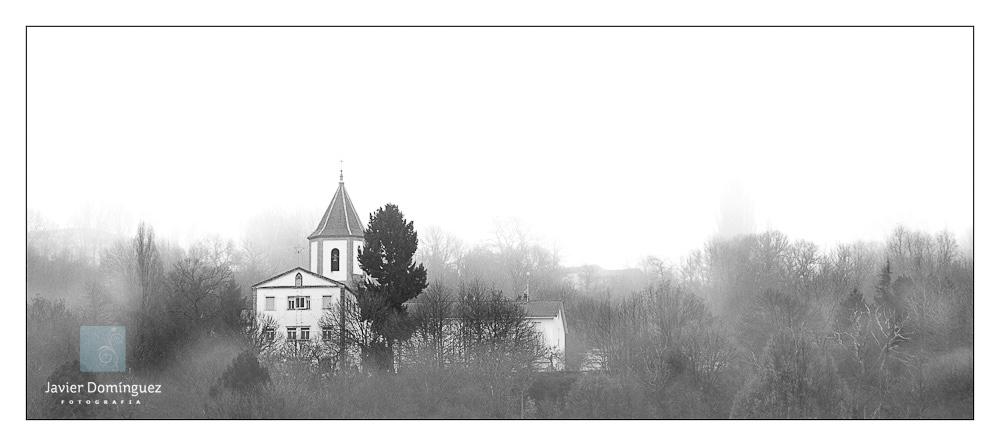Entre la niebla…
